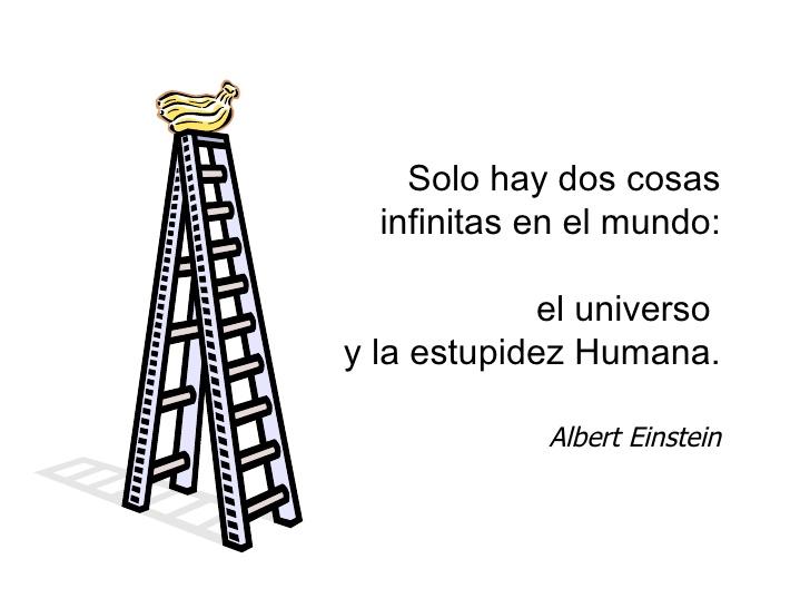 Escalera con bananas en la cima con una frase de Albert Einstein