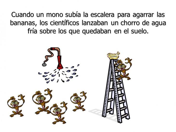 ilustración que muestra la parábola de los cinco monos