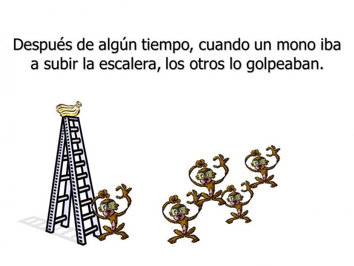 Resistencia al cambio, la parábola de los 5 monos