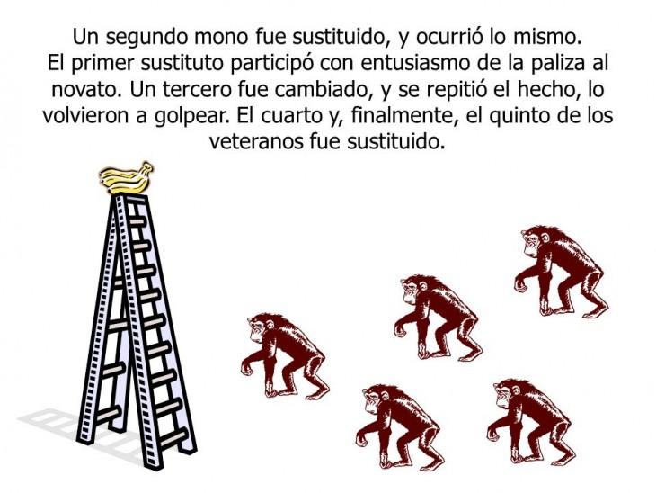 """""""El Cambio"""", la parábola ilustrada por 5 monos"""