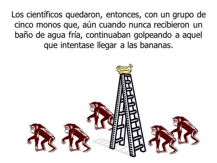 """ilustración muestra la parábola de los cinco monos conocida como """"Resistencia al cambio"""""""