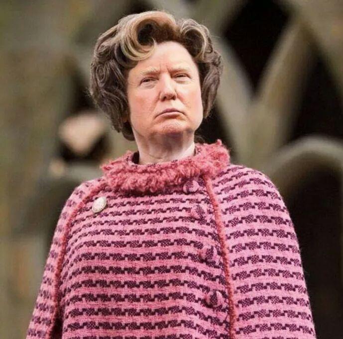 Resultado de la combinación de las caras de Donald Trump Y Dolores Umbridge