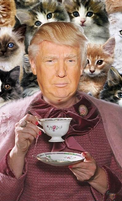 Combinación del candidato Donald Trump con Dolores Umbridge