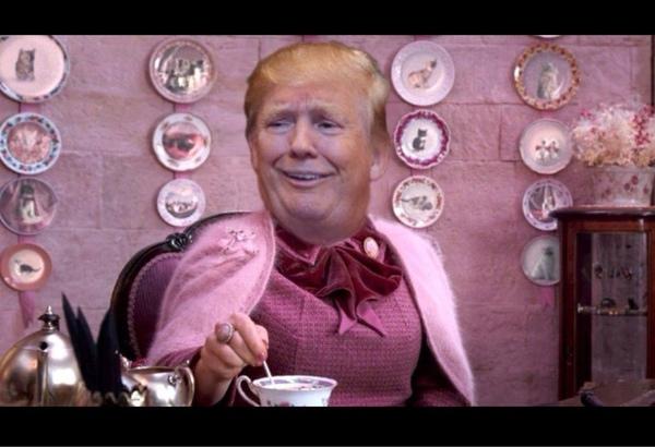 cara de donald trump con el cuerpo de Dolores Umbridge tomando el té