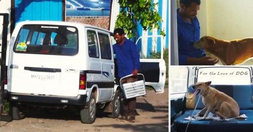 hombre ahorra durante 10 años para comprar una ambulancia para perros