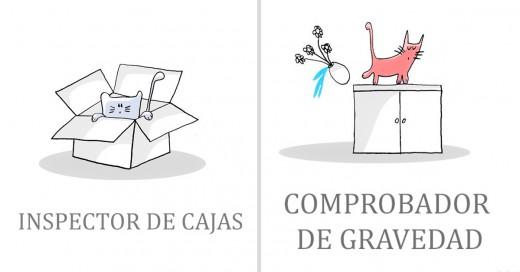 trabajos de gatos