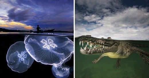 increíbles fotografías que combinan la superficie y el mar