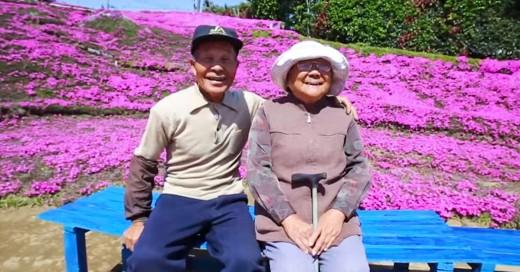 Planto dosmil flores para que su esposa ciega las oliera
