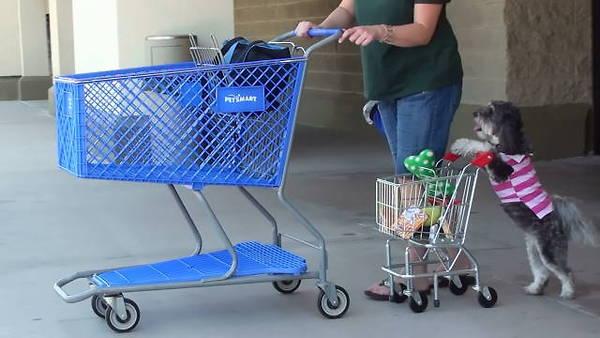 Hasta sales de compras con él