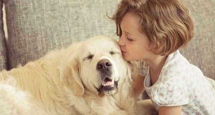 Las muestras de afecto a tu perro son tu pan de cada día