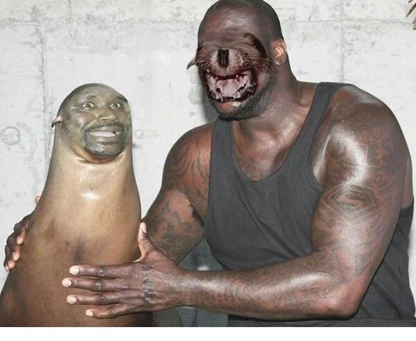 Snapchat con una foca