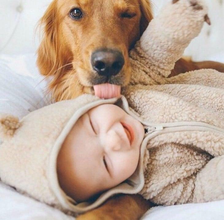 perro besando a niño y lo llena de saliva