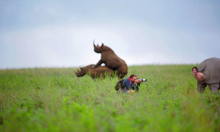 reddit rinocerontes atras