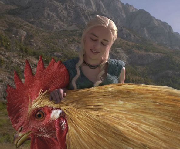 Batalla de Photoshop Daenerys Game of Thrones con un gallo entre sus manos