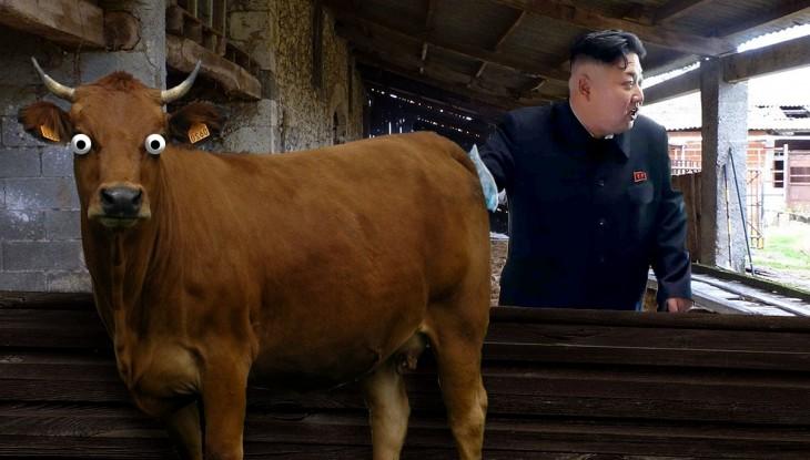 Batalla de Photoshop a Kim Jong Un fumando en un orfanato metiendo la mano sobre un toro