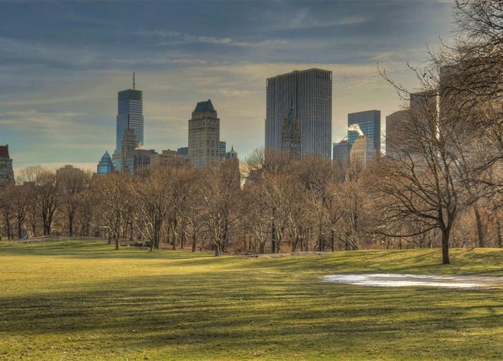 solitario central park en otoño