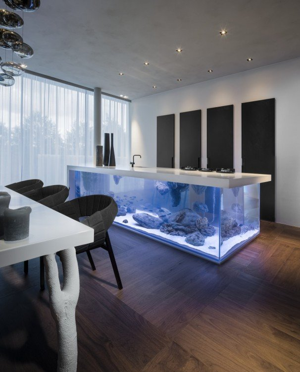 isla de cocina de una casa con acuario incluido