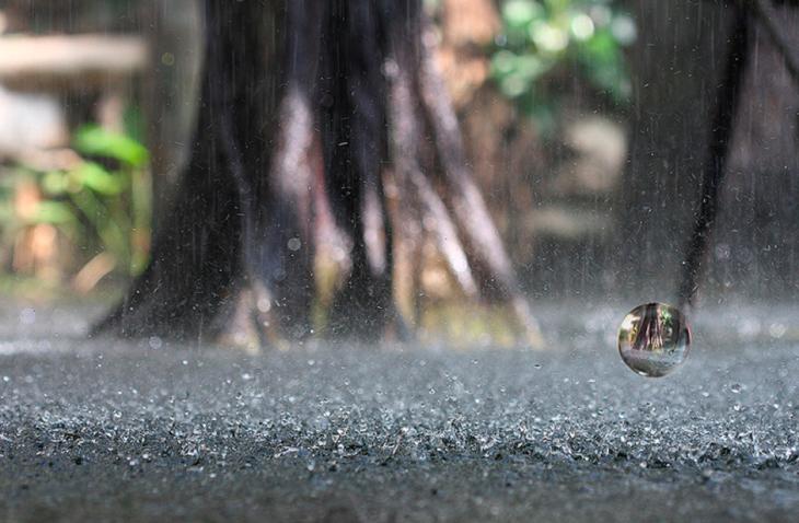 Imagen de la lluvia cayendo sobre el suelo