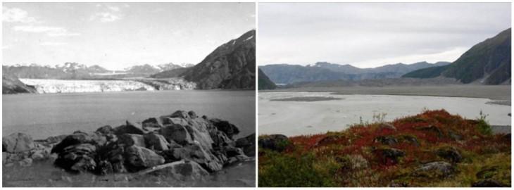 Glaciar Carroll en Alaska fotografía de agosto de 1906 y de septiembre de 2003