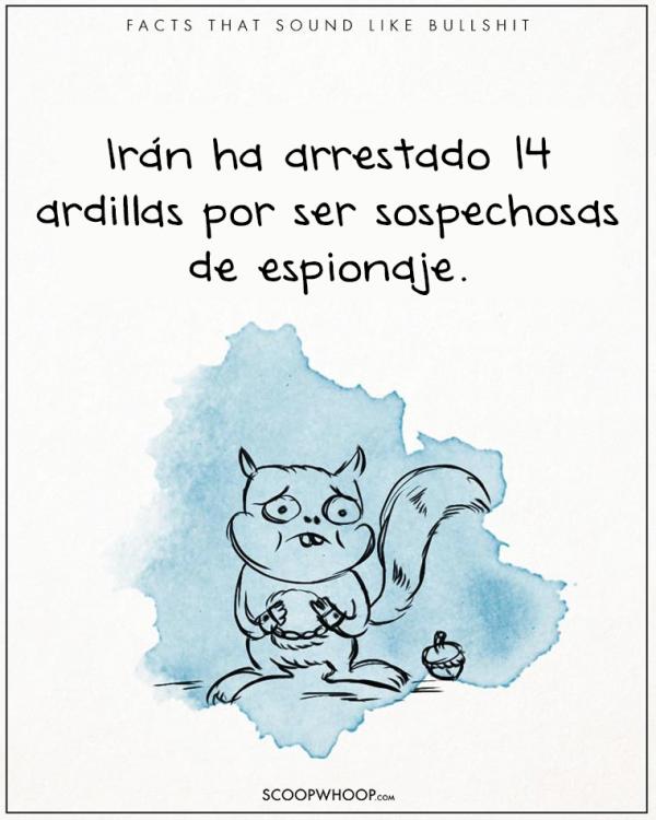 IRÁN ARRESTO A 14 ARDILLAS POR ESPIONAJE
