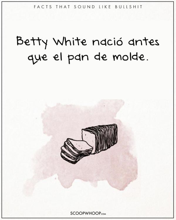 EL PAN DE CAJA ANCIÓ ANTES