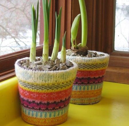 calcetines reutilizados como fundas para macetas