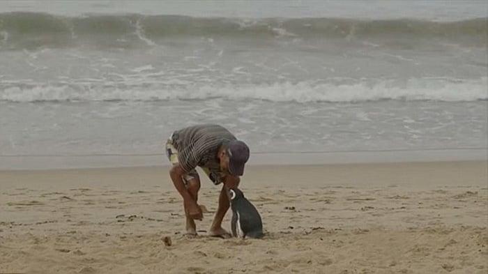 joao con dimdim en la playa de brasil