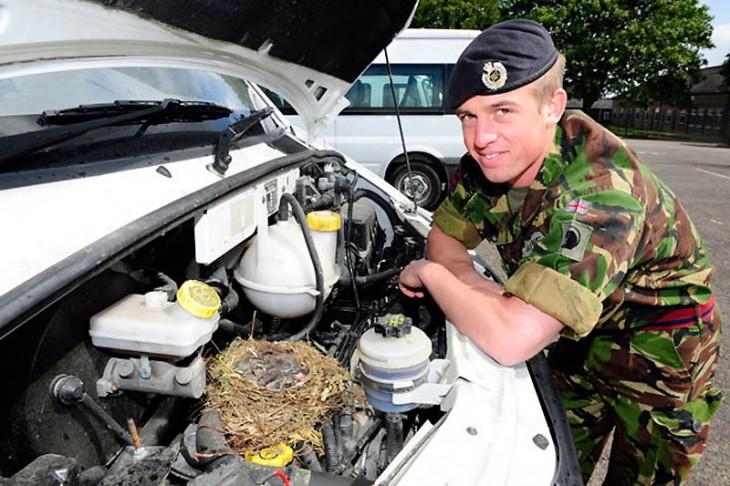 soldado recargado sobre el motor de un coche donde está un nido de ave