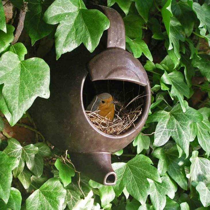 nido de pájaro dentro de una tetera vieja en medio de plantas