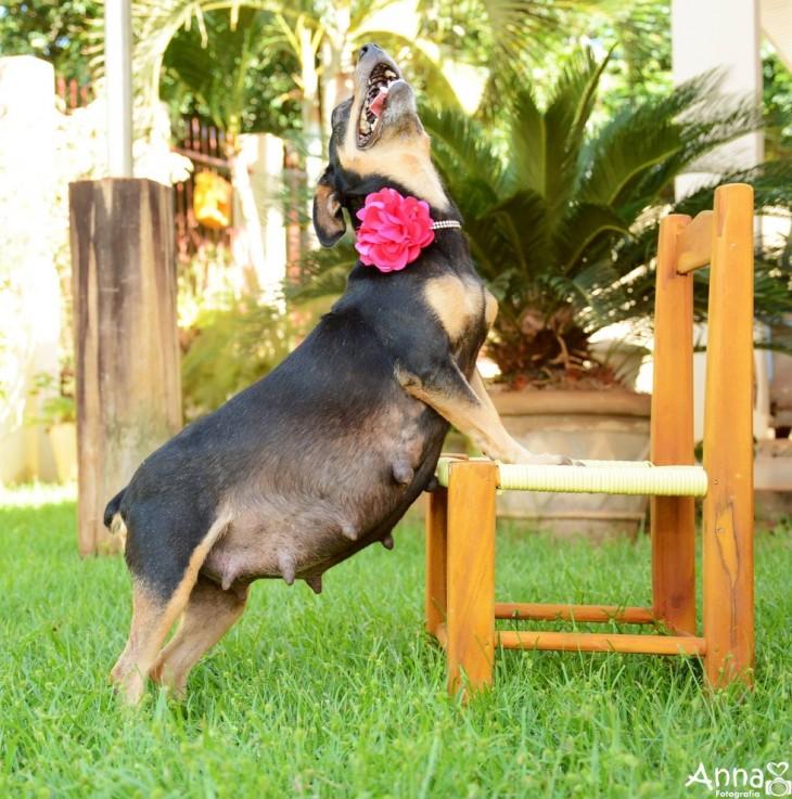lilita estirando la barriga en una silla