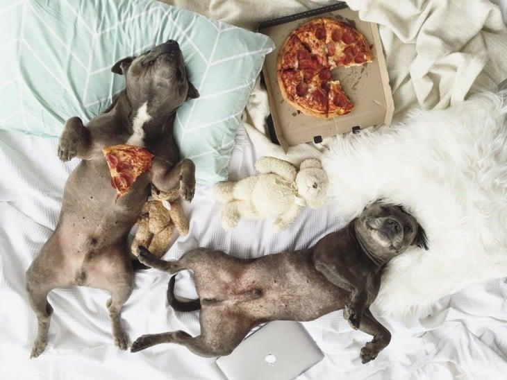 con la pizza en la panza