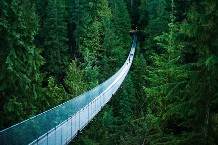 puente colgante capilano en vancouver