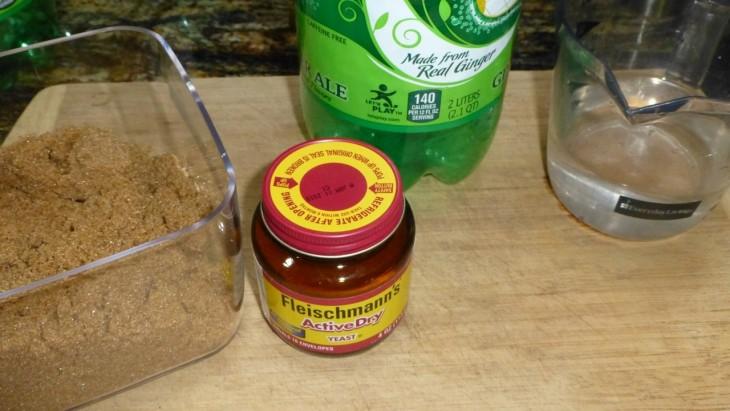 água, açúcar e fermento para fazer um repelente de mosquitos.
