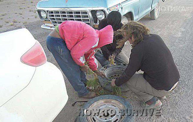 personas llenando una llanta con hierba