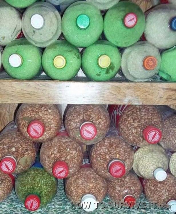 botellas de plástico llenas de granos de arroz y frijoles