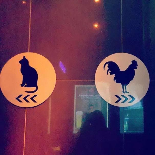 letreros de baños con la figura de un gallo y con la figura de un gato