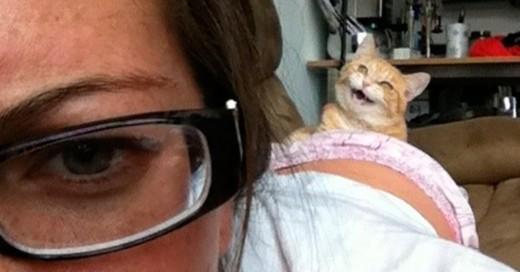 Pensamientos que todos los que tenemos gatos nos hacemos