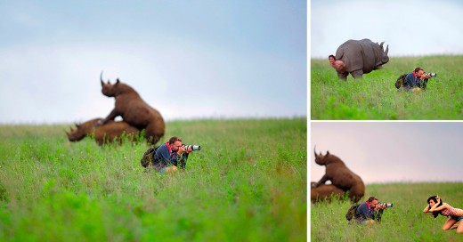 cómo trollear a un Fotógrafo Profesional