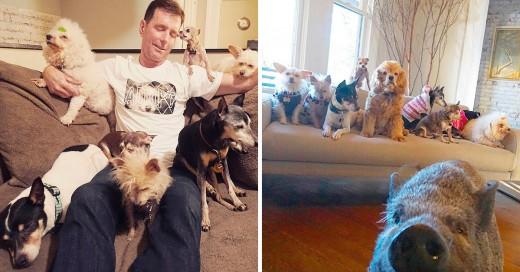 Este hombre dedica su vida a adoptar perros ancianos que no logran tener un hogar