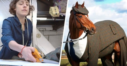 traje para caballo
