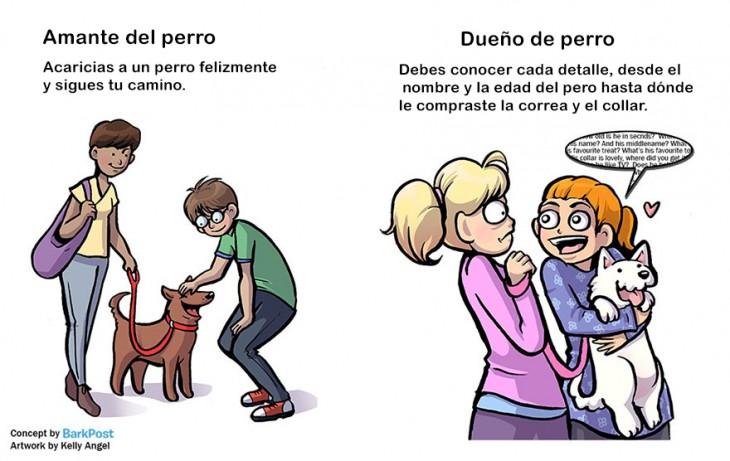 diferencias entre amante de perro y dueño de perro cuando ves algun perro en la calle