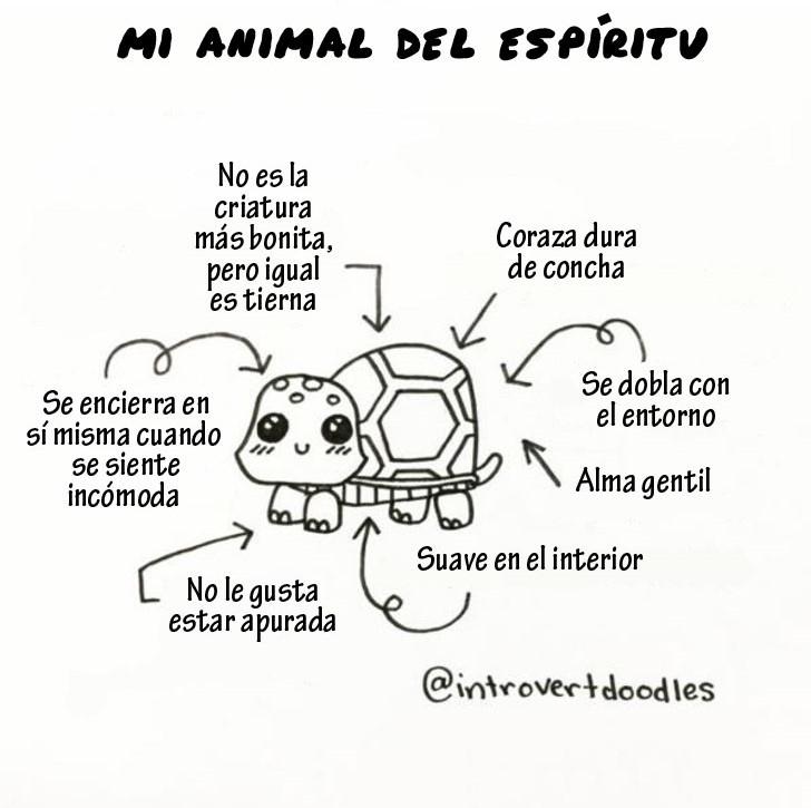 Mi animal... una tortuga
