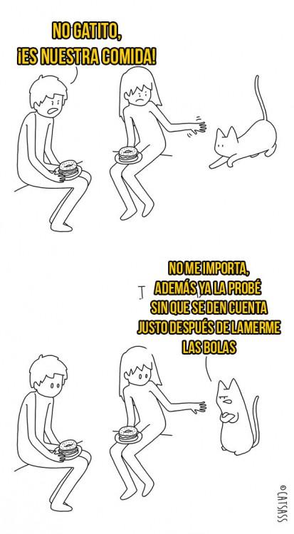 ilustración de dueños alejando al gato de la comida