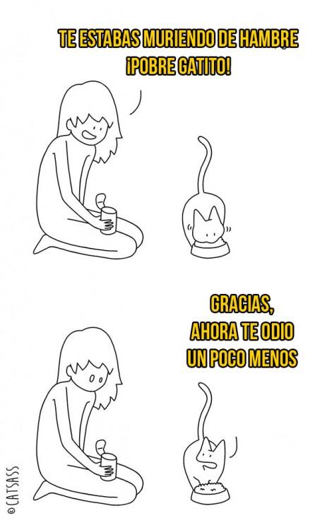 ilustración de dueña dando comida a su gato