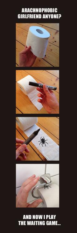 papel de baño con un dibujo de una araña