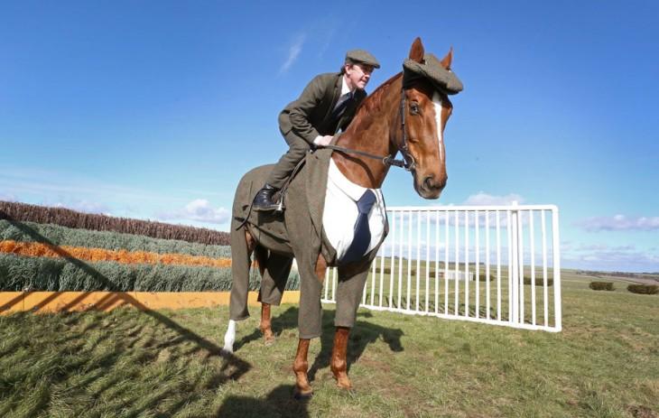 jinete y caballo, ambos con traje tweed