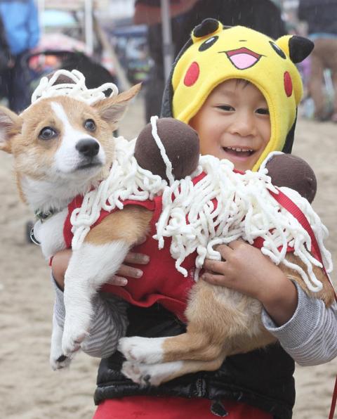 corgi en la playa disfrazado de espagueti con albóndigas mientras un niño lo carga
