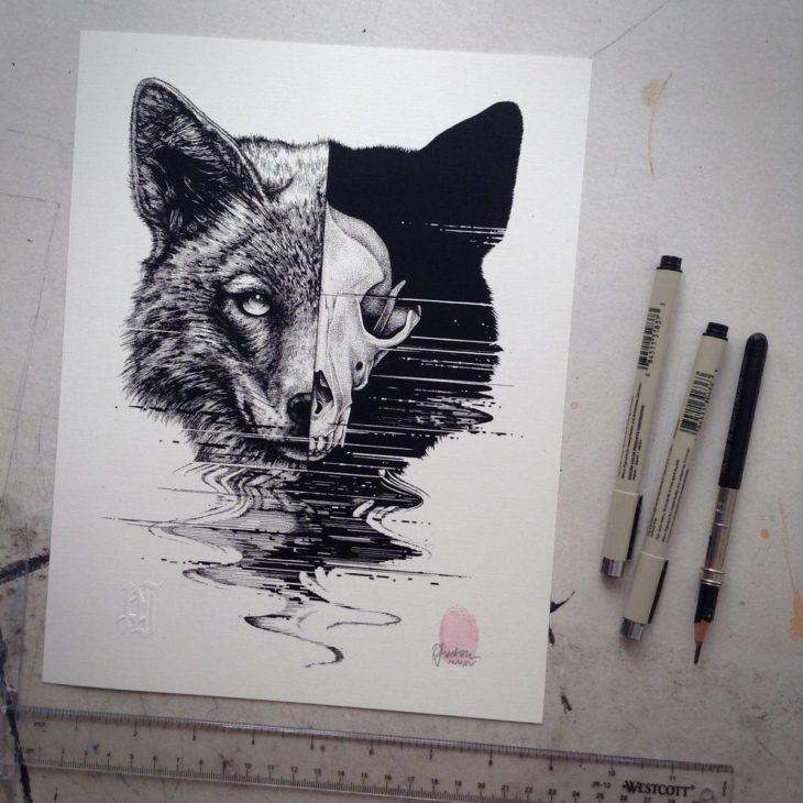 dibujo que muestra la mitad de la cabeza de un lobo con la mitad mostrando su esqueleto