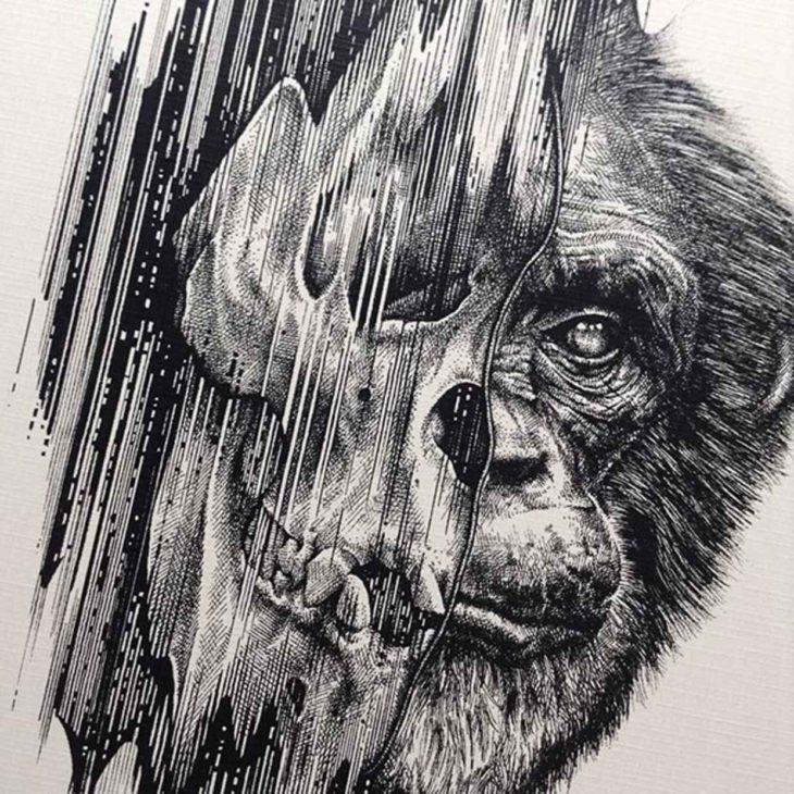 dibujo que muestra la cabeza de un gorila donde la mitad se puede ver su esqueleto