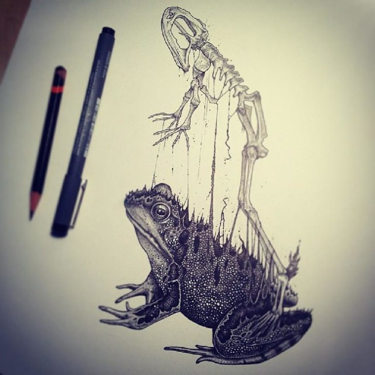 dibujo del esqueleto de una rana saliendo de su cuerpo